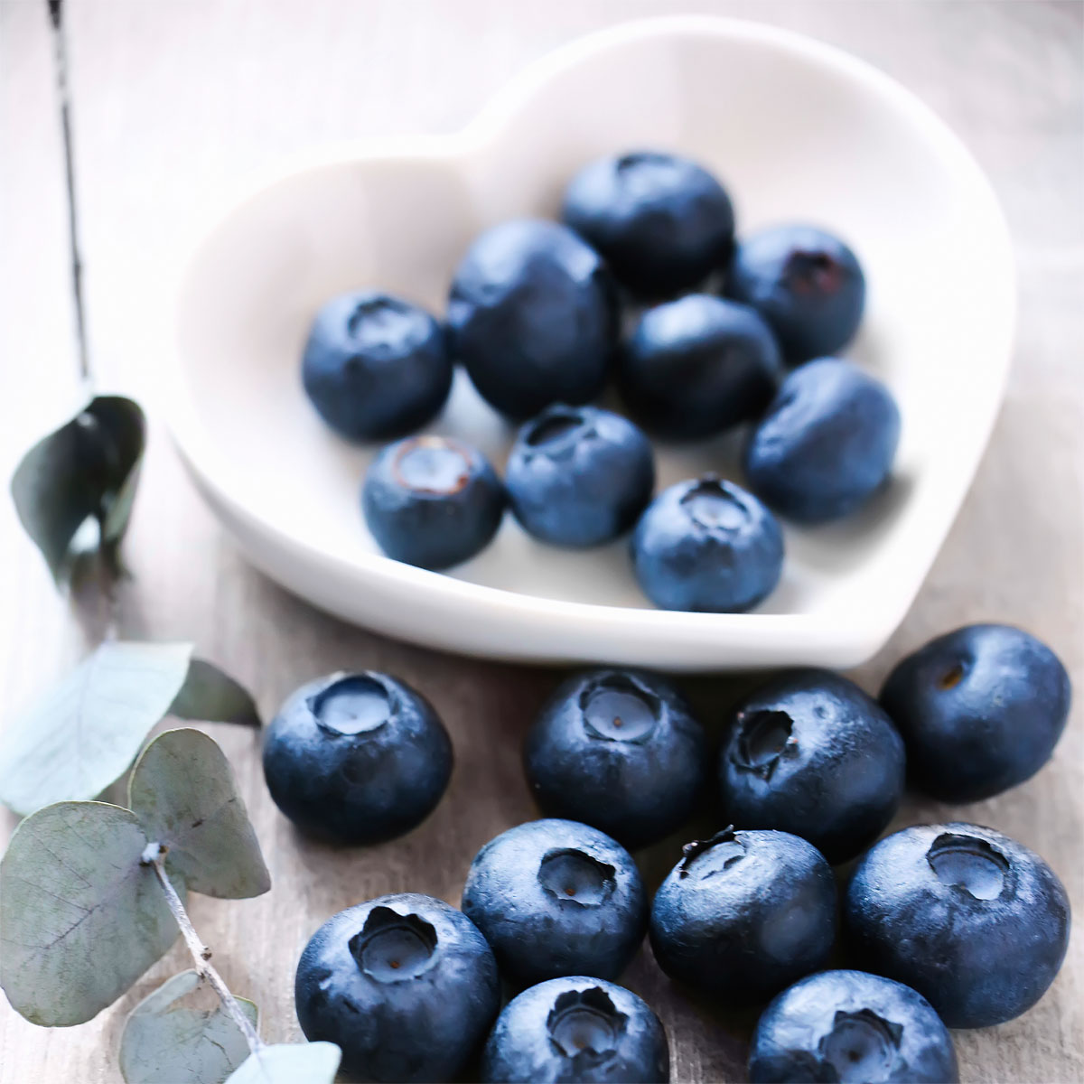 active sports therapy calgary holistic nutritional counselling fruit blueberries image