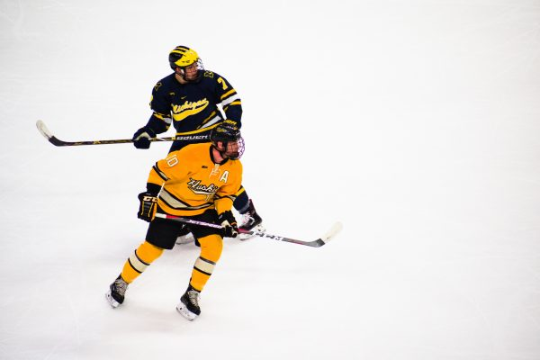 Common Hockey Injuries & Treatments
