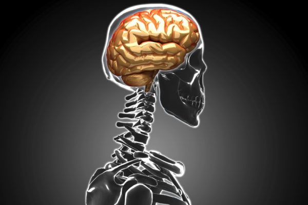 Could You Have a Predisposition to Getting a Concussion?