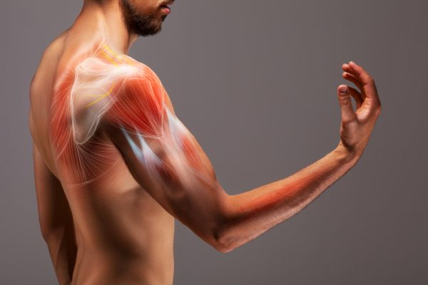 What is Intramuscular Stimulation (IMS)